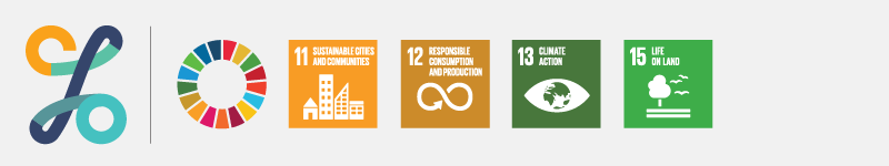 CSO SDGs banner with SDG indicator icons 11, 12, 13 & 15