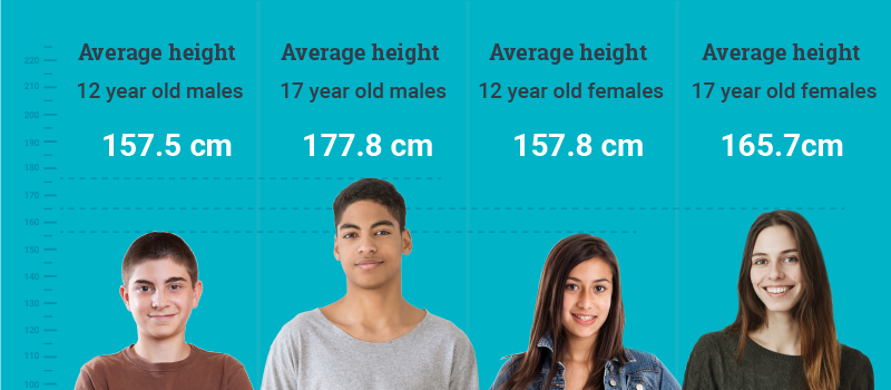 Average Heights